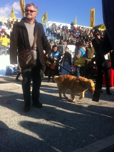 puppy viareggio
